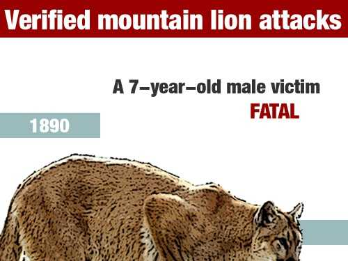 In June 1890, a 7-year-old boy died in a mountain lion attack in Siskiyou County.