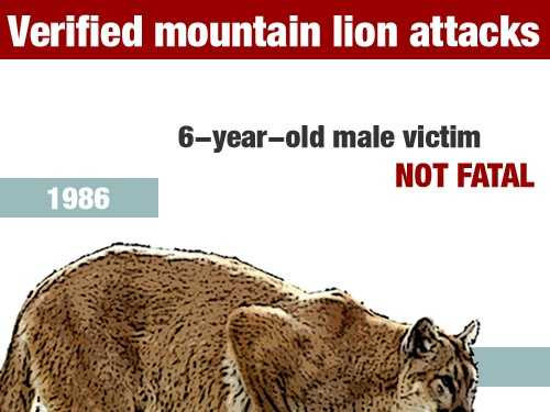 In October 1986, a 6-year-old boy was injured in a mountain lion attack in Orange County.
