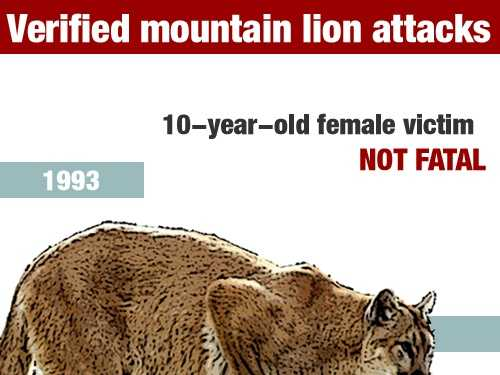 InSeptember 1993, a 10-year-old girl was injured in a mountain lion attack in San Diego County.