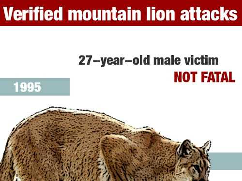 In March 1995, a 27-year-old man was injured in a mountain lion attack in Los Angeles County.