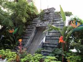 A jungle environment is just part of what visitors can expect in the Birds in Paradise attraction.