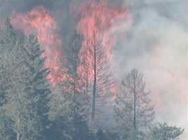6:03 p.m. WednesdayRobbers Fire grows to 200 acres.