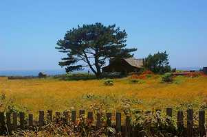 The obesity rate for Mendocino County is 23 percent.