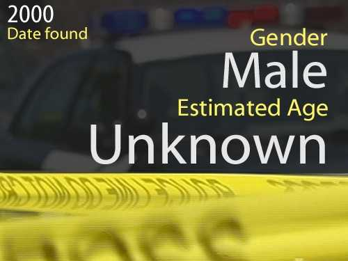 00-03975Estimated age: UnknownDate found: Sept. 15, 2000Circumstances: The victim's skull was discovered by a pedestrian in the yard of an abandoned home in the 2600 block of Beaumount St.
