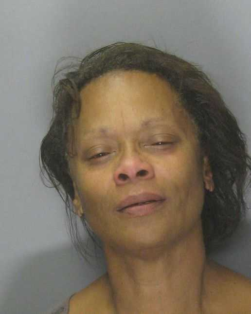 Victoria Brinkley-Hunter, 57, was arrested and now faces a felony hit-and-run charge and a count on misdemeanor driving under the influence, officers said. Read full story