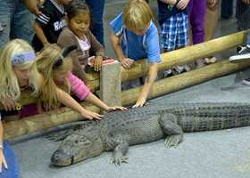 What: Sacramento Reptile ShowWhere: Sacramento Convention CenterWhen: Sat. 10 a.m. to 5 p.m.&#x3B; Sun. 10 a.m. to 4 p.m.Click here for more information on this event.