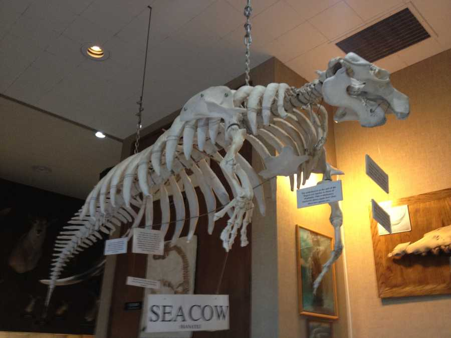 Sierra College in Rocklin will host two history museum tours: one Oct. 20 and the next in December (photo taken Oct. 1, 2012).
