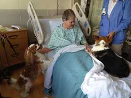 "Service dogs and their handlers of Sutter Memorial Medical Center's ""Paws on Call"" therapy program provide many hours of comfort to patients at both Sutter hospitals."