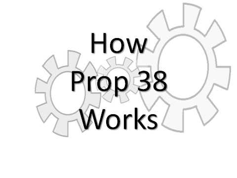 This slideshow illustrates step-by-step how Prop. 38 would work, if approved by voters on Nov. 6.