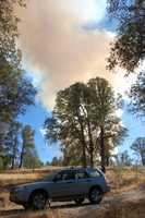 Cal Fire reported that the fire started near Highway 29 and Perini Road near the south end of Lower Lake.