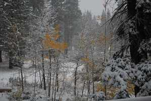 A u local user sent this photo of Tahoe City around 8 a.m. Monday.