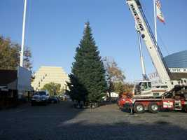 The Theater of Lights shows in downtown Sacramento start Nov. 21. (Nov. 8, 2012)