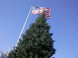 "The annual Christmas tree for the ""Tree of Lights"" celebration arrived Thursday morning. (Nov. 8, 2012)"