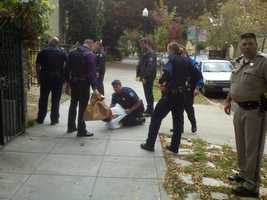 A man was taken into custody Thursday after taking authorities on a chase that came to a halt in downtown Sacramento.