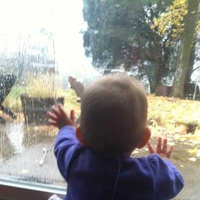A young weather watcher in training? Hazel will be watching mom report on the rain starting Friday morning.