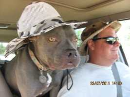 Sacramento County Animal Control officer Roy Marcum, 45, was shot and killed. Marcum was of Elk Grove. Marcum's companion, Petunia, rides with the officer.