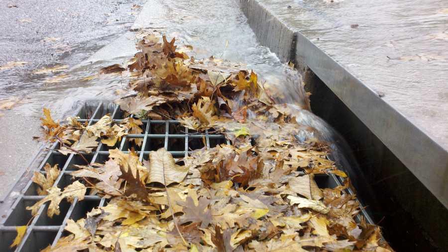 ThursdayParadise rain is heavy and sends runoff into storm drains.