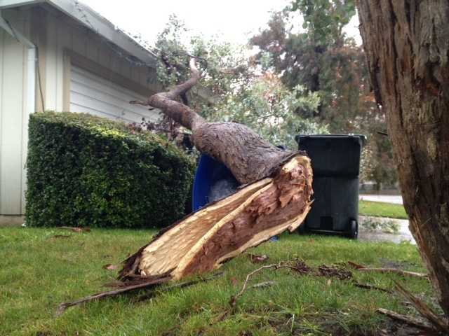 FridayA branch falls on a home as the storm continues to move through Northern California.
