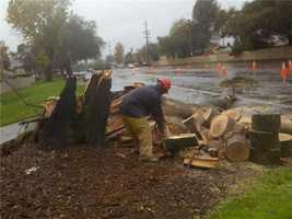 SundayRain and heavy winds pummeled Northern California on Sunday. (Dec. 2, 2012)
