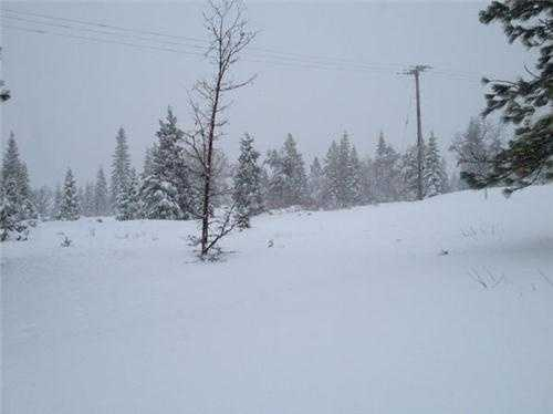 Sierra ski resorts have received more than 240 inches of snow. That's more than half of the annual average.