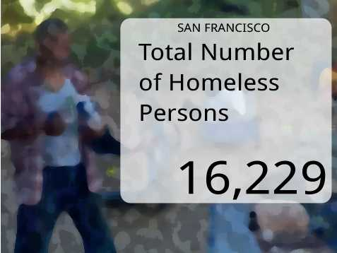 In San Francisco, the total number of homeless persons was 16,229.