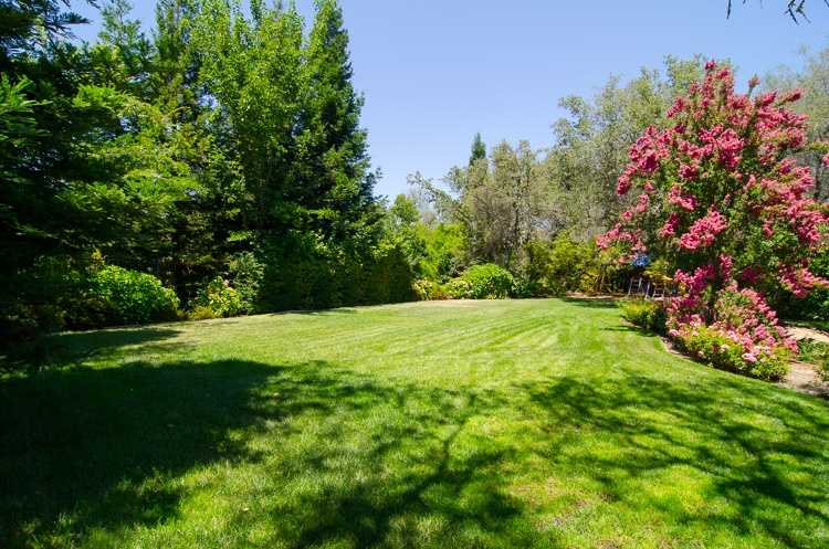 Once outside, you'll find a large backyard.