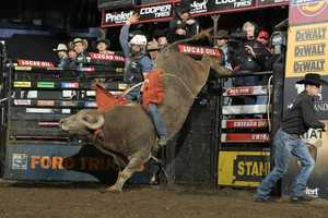 What: Professional Bull RidersWhere: Sleep Train ArenaWhen: Fri & Sat 8pmClick here for more information on this event.