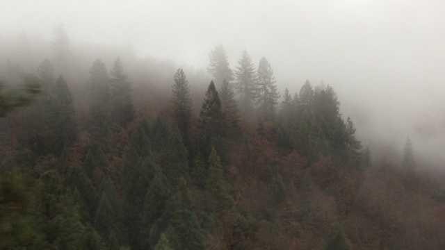 Misty mountains 1