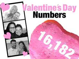 16,182: The total number of florists' establishments nationwide in 2010. These businesses employed 70,575 people. Source: U.S. Census Bureau, County Business Patterns, NAICS