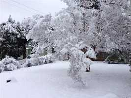 Snowfall in Placerville. (Feb. 19, 2013)