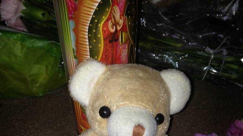 Teddy bear, Purple Heart