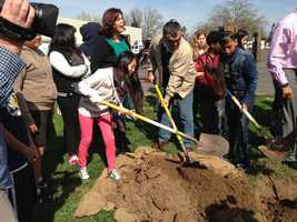 The students, staff and the Sacramento Tree Foundation planted 22 trees along the school's parking lot.