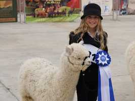 What: International Alpaca OdysseyWhere: Cal ExpoWhen: Sat & Sun 8:30am-5pmClick here for more information on this event