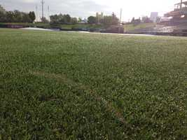All of the grass was ripped out and replaced with new sod at Raley Field.