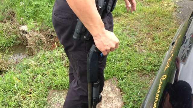 Shotgun recovered.jpg