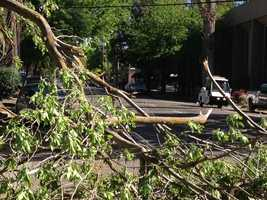Tree limbs down at 19th and N streets.