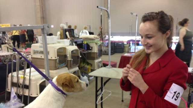 Jessica Hadley shows off her dog, Captain Jack Sparrow, during the Sacramento Kennel Club dog show at Cal Expo.
