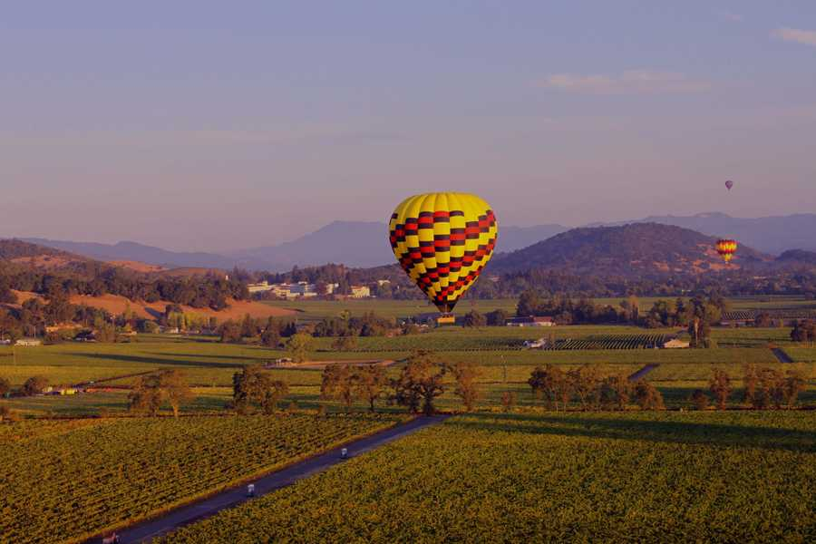 3. The Napa Valley is 30 miles long and only 5 miles wide at its widest point.