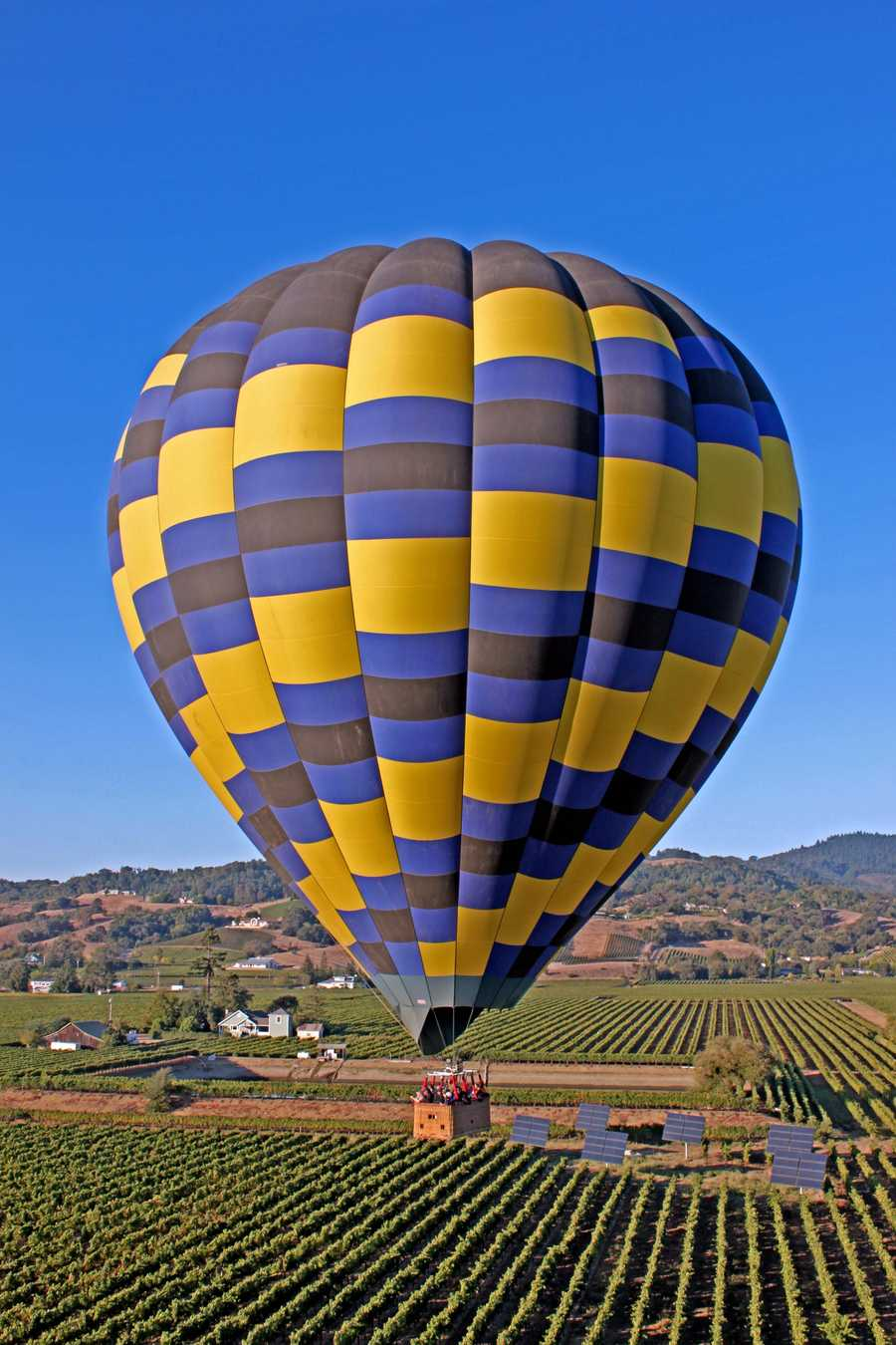 16. The Napa region got a boost form the Paris Wine Tasting of 1976 when Napa Valley Chardonnay and Cabernet Sauvignon were featured, beating out some famous French labels in a blind tasting competition.