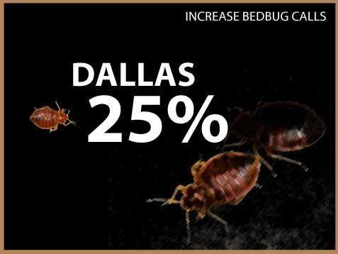 Dallas experienced a 25 percent increase in calls.