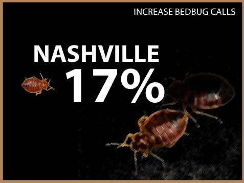 Nashville experienced a 17 percent increase in calls.