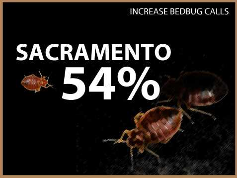 Sacramento experienced a 54 percent increase in calls, the most of all cities surveyed. Read full story