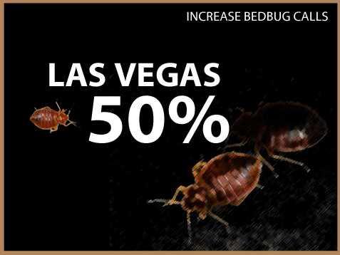Las Vegas experienced a 50 percent increase in calls.