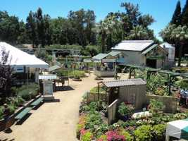Outdoor exhibits feature different plants, landscaping and more.