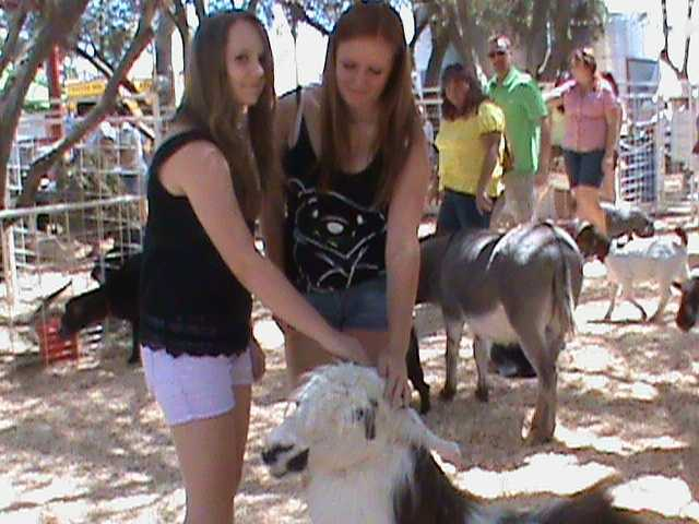 The petting zoo at the State Fair can be enjoyed by most. It's an experience like no other.