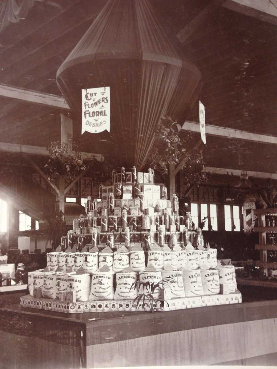 This 1895 photo of the State Fair shows a C.B. Strong and Company exhibit at the Capitol Park site exhibit. C.B. Strong and Company was a wholesale retailer of flowers and field seeds.