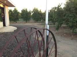 Beginning in 1960, five generations of farmers have plowed and harvested the fertile soil near Marysville. From Highway 70, drivers can see the signs that point to famous peach orchard.