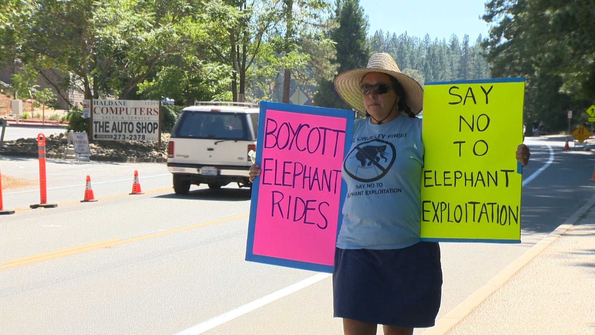 Guests at the Nevada County Fairgrounds take rides on two elephants. The elephant rides sparked protests outside the gates (Aug. 7, 2013).