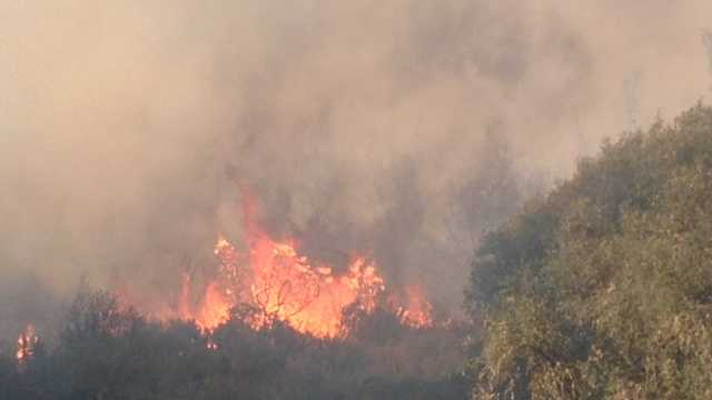 The cause of the Rim Fire remains under investigation.