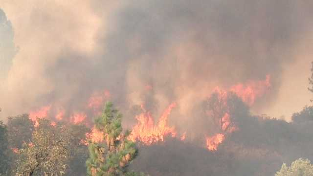 Wildlife officials were also trying to monitor at least four bald eagle nests in the fire-stricken area.